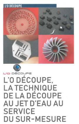 Revue de presse : Lettre d'information de la CSM et du MEDEF Haute-Savoie